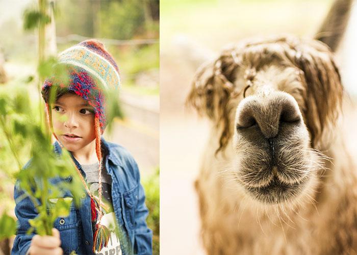 NAY MENEZES PERU KIDS 5